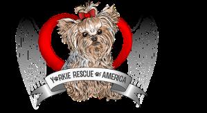 yorkie rescue logo